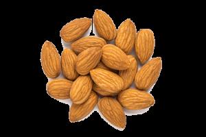 mandlji 1