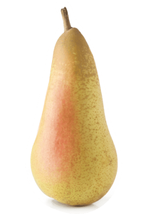 hruške
