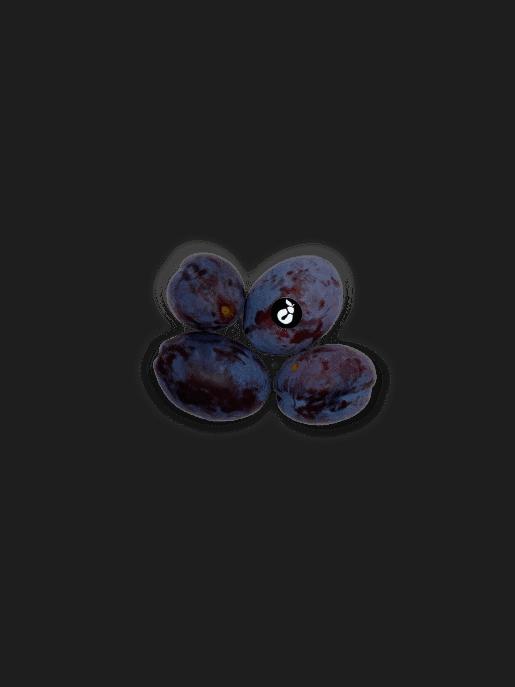 sadje slive