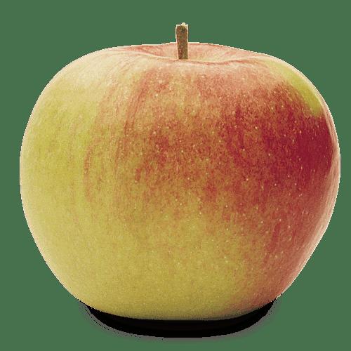 ionagold jabolko 1