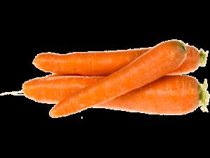 zelenjava korenje