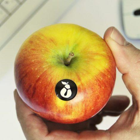 JABOLKA TOPAZ DOSTAVA sadja za podjetja